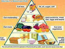 Complete Diet Chart Diet Chart Balanced Diet Diet Chart By Dietitians