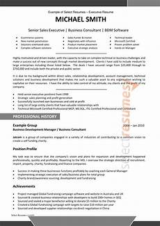 Sample Resume For Resume Writing Services By Professional And Specialist