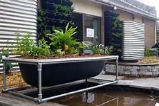 Aquaponics Setup Design Making A Diy Bathtub Aquaponics System Milkwood