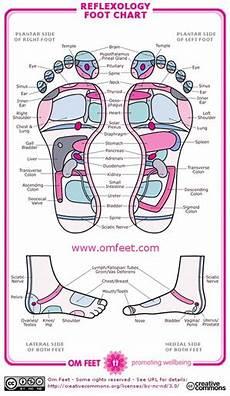 Norman Reflexology Foot Chart Reflexology Information And A Reflexology Chart