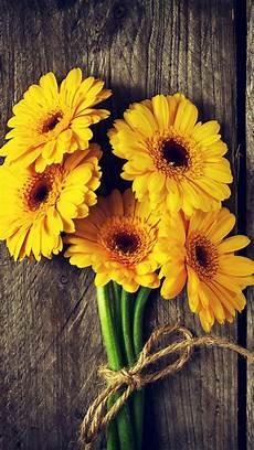 Iphone Wallpaper Original Flower by Yellow Flowers Gerbera Wood Board 1080x1920 Iphone 8 7 6