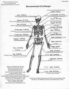 Veterinary Radiographic Positioning Chart Kvp Mas Ranges Pin This First To Check Later If They Are