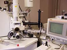 Scanning Electron Microscopy Training Acmal Etraining Electron Microscopy Online Training