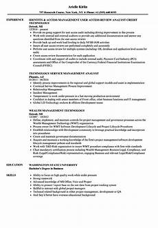 It Management Resume Technology Management Resume Samples Velvet Jobs