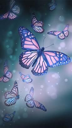 butterfly wallpaper in iphone butterfly wallpaper in 2019 butterfly wallpaper iphone
