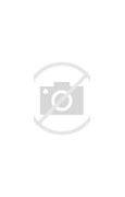 Louis Vuitton アイフォン4 ケース に対する画像結果