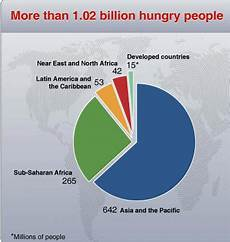 Pie Chart Of World Hunger Students Resources For Writing Projects Cause And