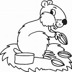 animal coloring pages 25 coloring kids