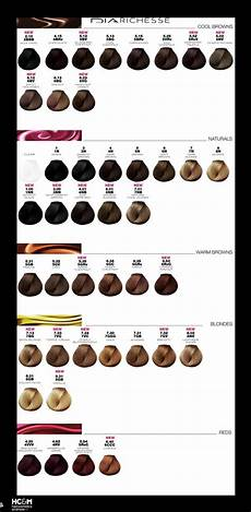 Loreal Hair Color Color Chart L Or 233 Al Professionnel Dia Richesse Color Chart August