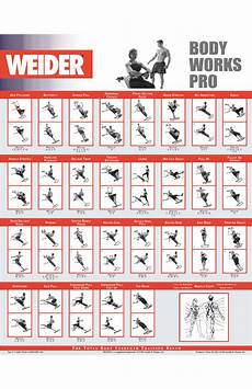 Parabody Home Gym Workout Chart Http Img Docstoccdn Com Thumb Orig 122413554 Png Gym