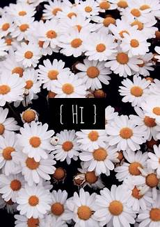 flower wallpaper we it flower wallpaper edit we it flowers and hi