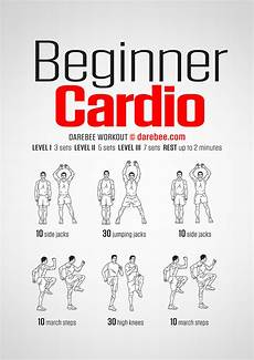 Cardiovascular Exercise Beginner Cardio Workout