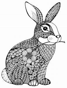 Ausmalbild Hase Muster Der Pl 252 Schige Hase Im Tangle Design Und Dazu Der