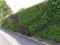 Vertical Green Green Walls Making Lewes