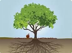 Framily Tree Family Trees Pearlsofprofundity