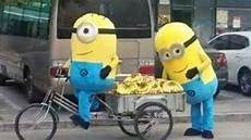 minions malvorlagen jogja dua minions ditangkap polisi saat jualan pisang tribun jogja