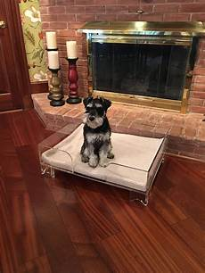 acrylic pet bed purple united products llc