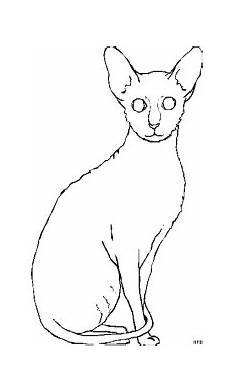 Malvorlage Sitzende Katze Schmale Sitzende Katze Ausmalbild Malvorlage Tiere