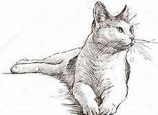Cat Drawing Images 19 Animal Drawing Templates Free Psd Ai Eps Format