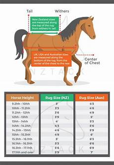 European Horse Blanket Size Chart Horse Cover Sizing Chart How To Choose The Right Rug For