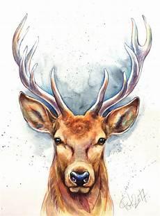 original hirsch aquarell bild illustration deer stag