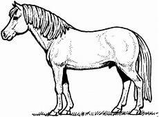 Malvorlage Pferd Gratis Ausmalbild Pferd 03 Ausmalbilder Pferde Ausmalbilder