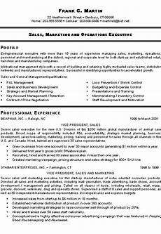 Cv Format For Marketing Executive Marketing Sales Executive Resume Example