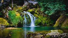 Nature 4k Wallpaper For Tablet by Animated 3d Nature Wallpaper Wide Free Amazing