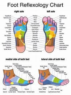 31 Printable Foot Reflexology Charts Amp Maps ᐅ Templatelab