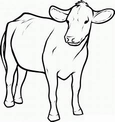 Outline Of Cow Cow Outline Cliparts Co