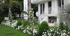 residence le terrazze alba adriatica resort olympus residence alba adriatica