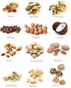 Nut Identification Chart 29 Best Treeman S Magiced Nuts Images On Pinterest