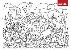 Ausmalbilder Fische Meer Unterwasser Malvorlagen Coloring And Malvorlagan