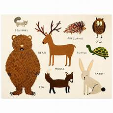 Rifle Paper Co Animal Alphabet Chart 108 Best Images About Dgc 4 Nocturnal Woodland On