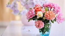 Flower Wallpaper Morning Hd by Flowers In Vase Hd Wallpaper Background Image