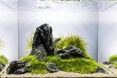 ada aquascape aquascape no 4 ada 45p the planted tank forum