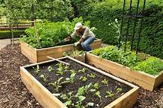 allotment wooden raised beds harrod horticultural