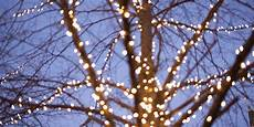 Tree Lights Lights Should You Hang Them On Your Trees And