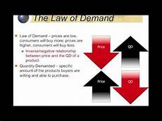 Law Of Demand Demand And The Law Of Demand Youtube