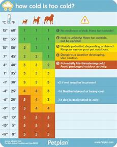 Play Whe Chart For Today Too Cold Outside For Dog Walking Chart Simplemost