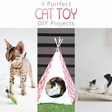 9 purrfect cat diy projects the cottage market