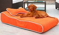 bowsers contour lounger bed
