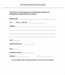 Donation Pledge Form Template Donation Form Template 8 Free Word Pdf Documents