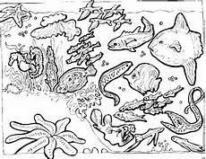 unterwassergetier ausmalbild malvorlage tiere