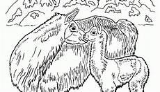 Zauberer Malvorlagen Tiere Zauberer Malvorlagen Tiere