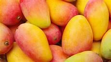 Mango La Fruta Tropical Con Acento Andaluz