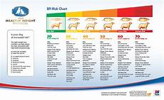 Ideal Weight For Dogs Weight Chart Weight Management Parker Center Animal Clinic