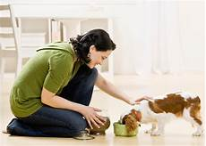 Looking For A Sitter Pet Sitters International Psi Announces The First Pet