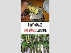 How to make real wasabi at home   Homemade sushi, Easy