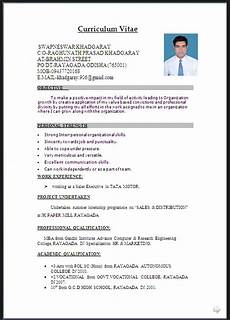 Resume Example Word Document Cv Word Document Format